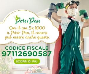 5×1000 Senza Dichiarazione Redditi: Scopri Come Fare su Peter Pan